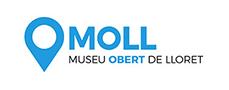 MOLL color-90